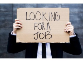 Looking for a Job - Cardboard Box